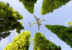 항공사는 환경 적 지속 가능성을 해결하기 위해 의미있는 파트너십을 구축해야합니다.