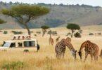 Аравдугаар сард Танзани Зүүн Африкийн бүс нутгийн аялал жуулчлалын томоохон үзэсгэлэнг зохион байгуулна