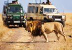 Keňa sa zameriava na africký cestovný ruch na zmiernenie dopadu COVID-19