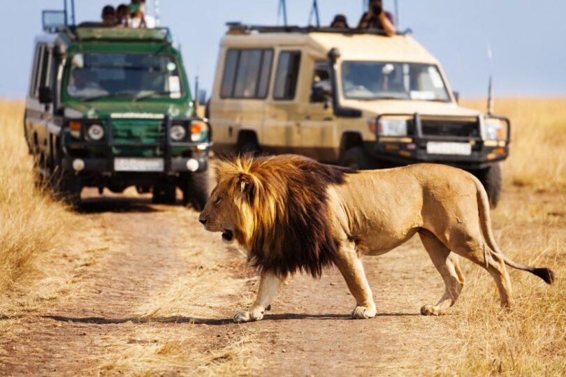 Kenya Targets African Tourism to Mitigate COVID-19 Impact