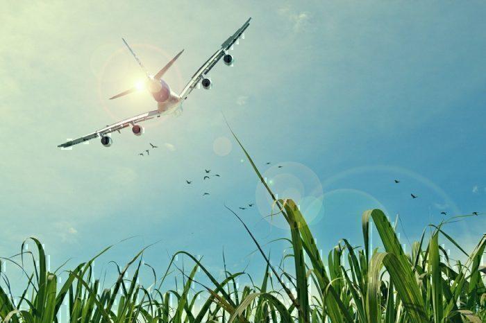 IATA: Daň není odpovědí na udržitelnost letectví