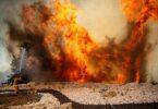 Israelo pledas por helpo, ĉar giganta arbarofajro furiozas ekster Jerusalemo
