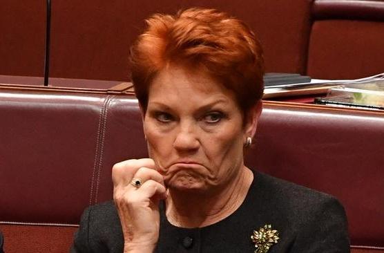 Anti-Vax Insanity: Is-Senatur Awstraljan Jiddefendi d-'Dritt li Jmut Minn COVID '