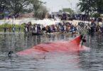 Pri havárii lode v Bangladéši zahynulo najmenej 21 ľudí, desiatky sú nezvestné